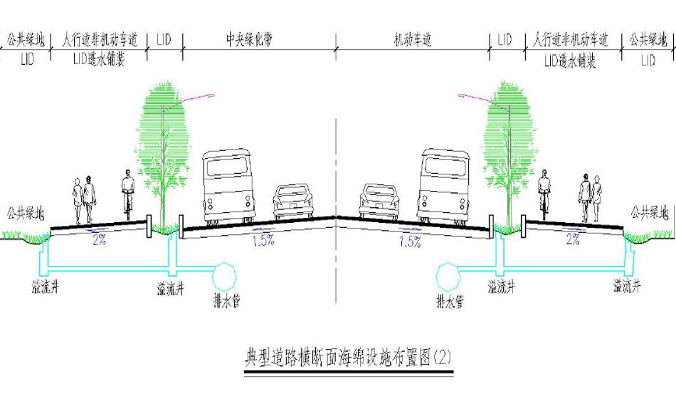 典型道路横断面海绵城市布置图2